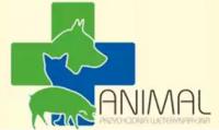 Przychodnia Weterynaryjna ANIMAL
