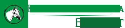 Klinika dla Koni EQUI-VET